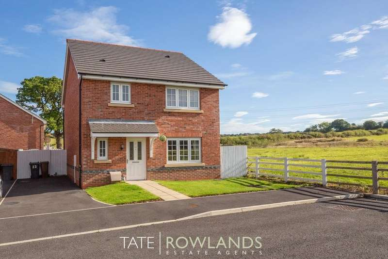 3 Bedrooms Detached House for sale in Ffordd Pedrog, Oakenholt, Flintshire, CH6