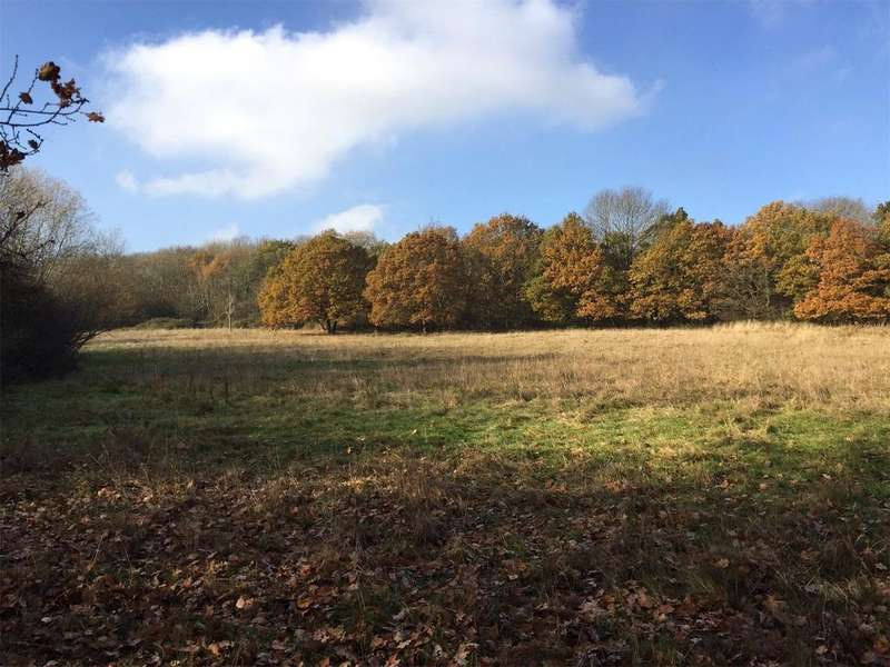 Land Commercial for sale in Clays Lane, Loughton, Essex, IG10