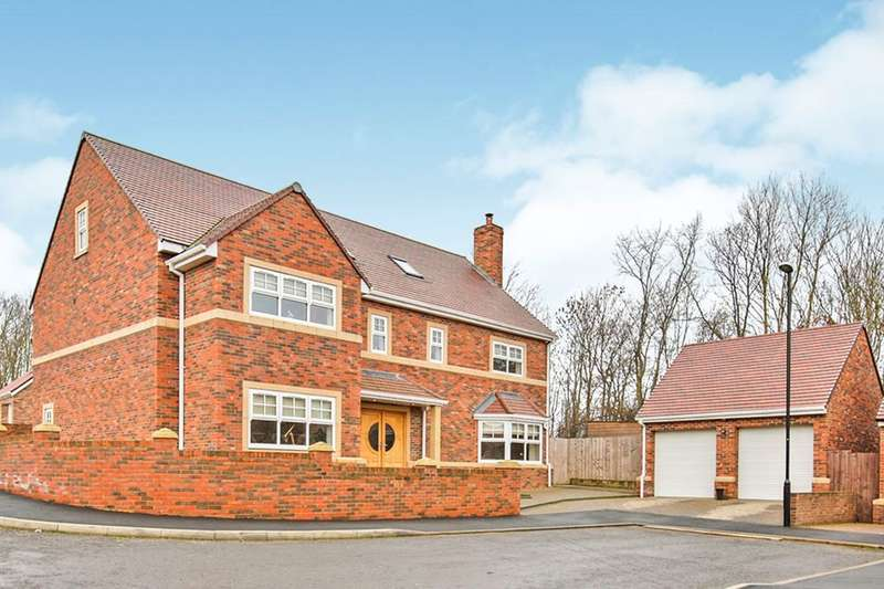 6 Bedrooms Detached House for sale in Spring Meadows, Houghton Le Spring, DH5