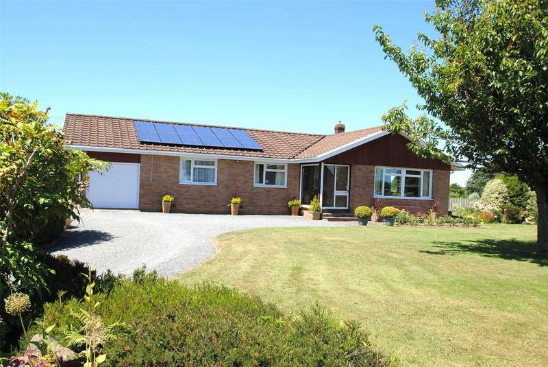 3 Bedrooms Detached Bungalow for sale in North Street, Witheridge