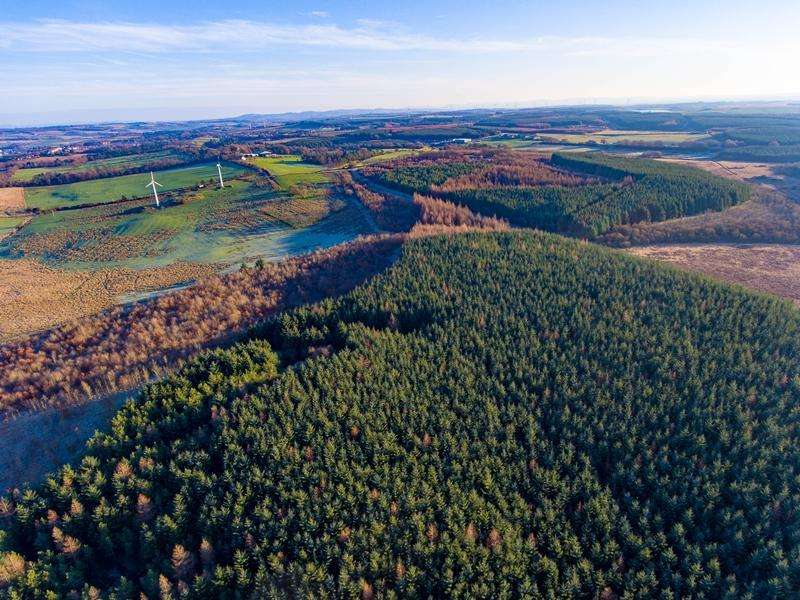 Land Commercial for sale in Todsbughts Farm Woodland, Nr Slamannan G65