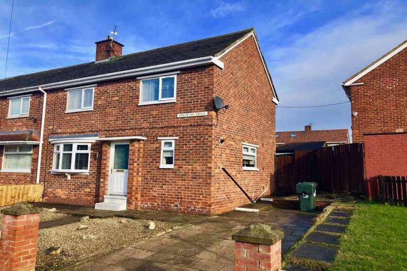 3 Bedrooms Terraced House for sale in Holdenby Drive, Middlesbrough, TS3