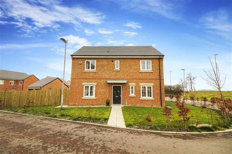 4 Bedrooms Detached House for sale in Buttercup Gardens, Blyth, Northumberland