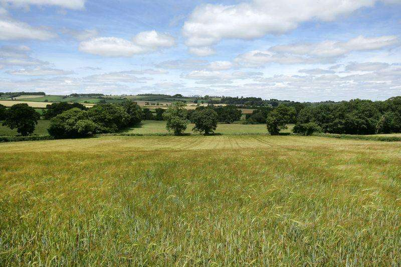 Land Commercial for sale in Crediton