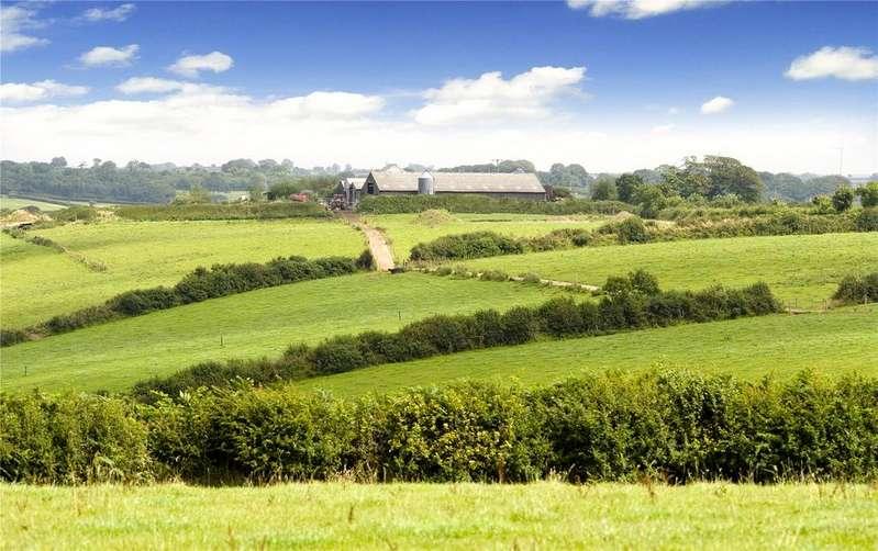 Farm Commercial for sale in Higher Woodford Farm (Whole), Milton Damerel, Holsworthy, Devon, EX22