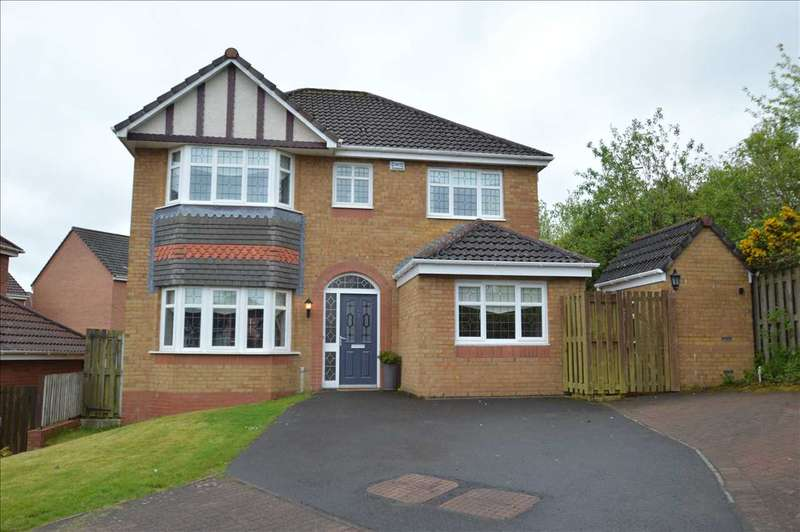 4 Bedrooms Detached House for sale in Skylands Place, Hamilton