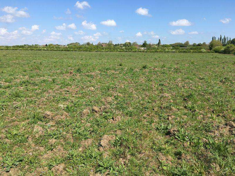 Land Commercial for sale in 5.57 Acres Arable Land, Martin (In 2 Lots)