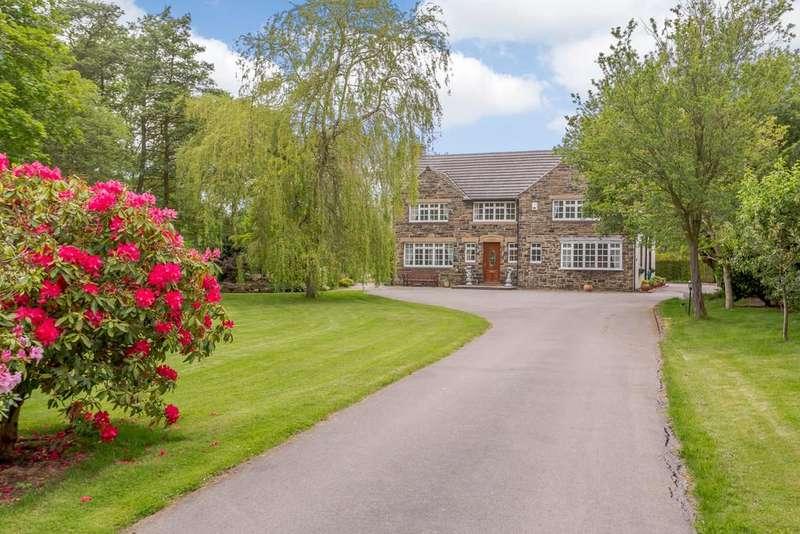 6 Bedrooms Detached House for sale in Birks Lane, Millhouse Green, Sheffield
