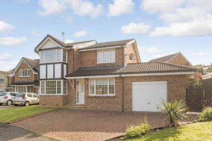 4 Bedrooms Detached House for sale in Powforth Close, Larkhall