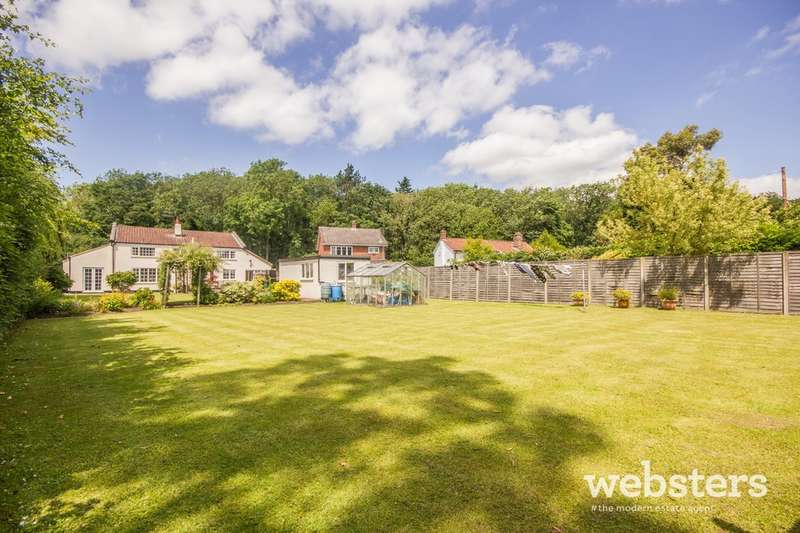 4 Bedrooms Detached House for sale in The Street, Bracon Ash NR14