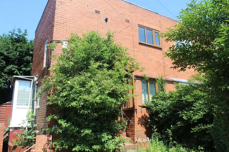 2 Bedrooms Semi Detached House for sale in Chapel Avenue, Heckmondwike, West Yorkshire, WF16