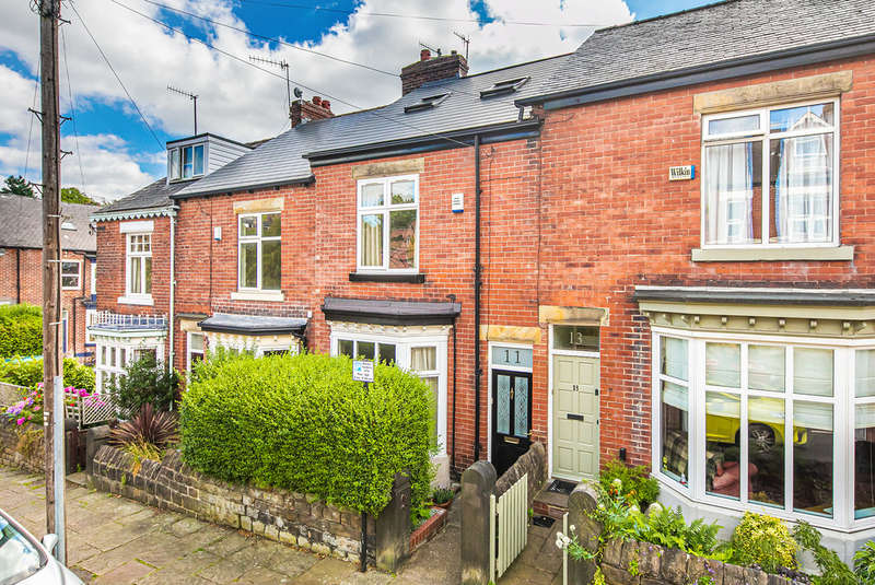 3 Bedrooms Terraced House for sale in Everton Road, Endcliffe