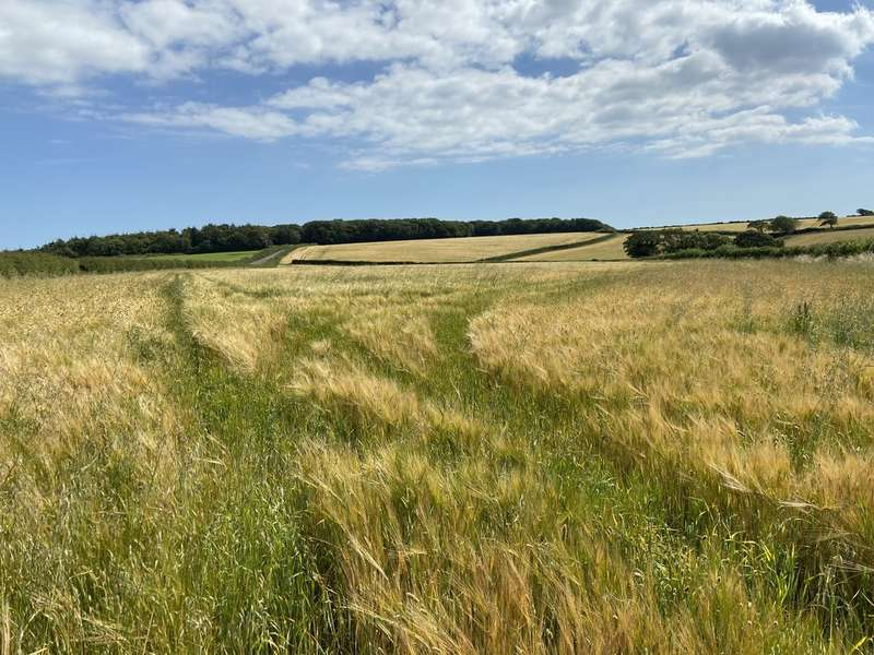 Land Commercial for sale in Land at Huxton Cross, Churchstow
