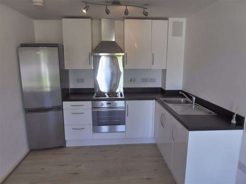 1 Bedroom Flat for sale in 151 Broughton Lane, New Broughton