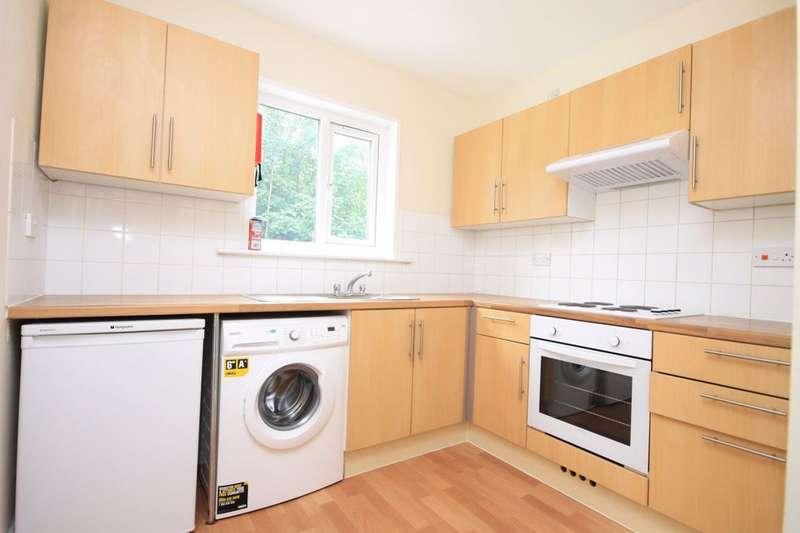 5 Bedrooms Maisonette Flat for rent in Springfield Road, Brighton, BN1 6BZ