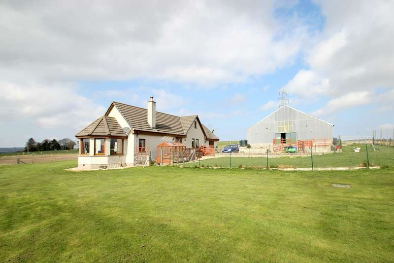 5 Bedrooms Commercial Property for sale in Yonderton Canine Care and Kennels, Newmill, Keith, AB55