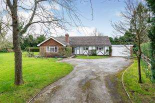 3 Bedrooms Bungalow for sale in Pound Green, Buxted, Uckfield, East Sussex