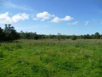 Property for sale in Llanddeiniolen