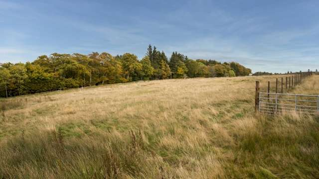 Detached House for sale in Tullochvenus, Lumphanan, Banchory, Aberdeenshire, AB31 4RN