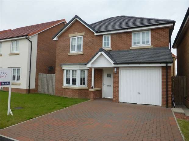 4 Bedrooms Detached House for sale in Buckthorn Crescent, Stockton-on-Tees, Durham