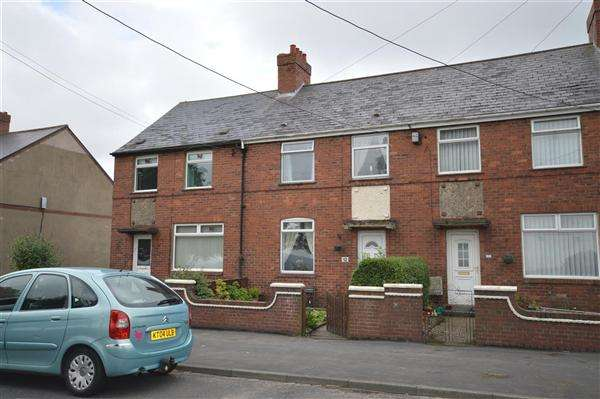 3 Bedrooms Terraced House for sale in Delight Row, Dipton