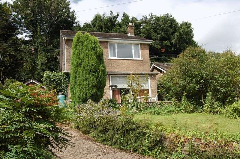 3 Bedrooms Detached House for sale in Laundry Lane, Newland