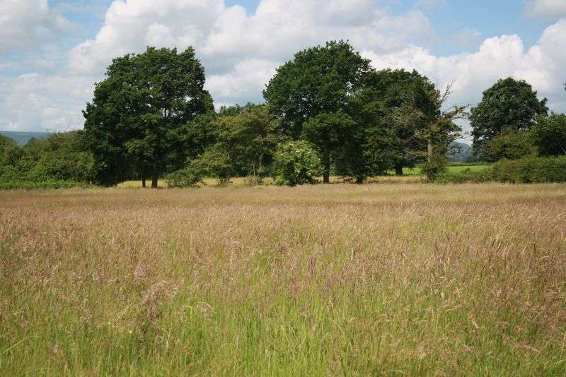 Property for sale in Land at Bryngwyn, Abergavenny