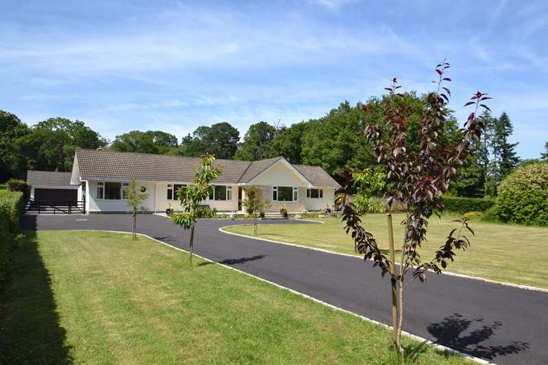 5 Bedrooms Detached Bungalow for sale in Canford Magna