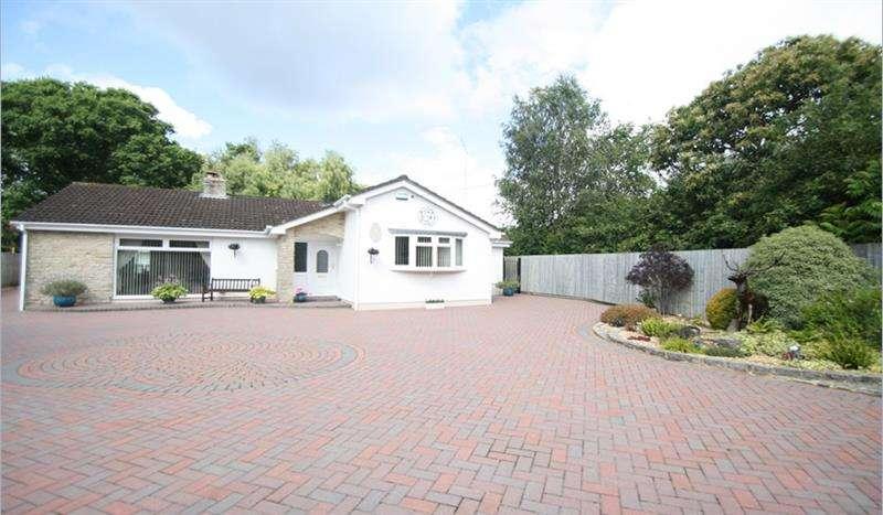 4 Bedrooms Detached Bungalow for sale in Verwood Road, Three Legged Cross, Wimborne