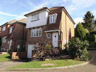 3 Bedrooms Detached House for sale in Meadow Rise, Horam, Heathfield, East Sussex