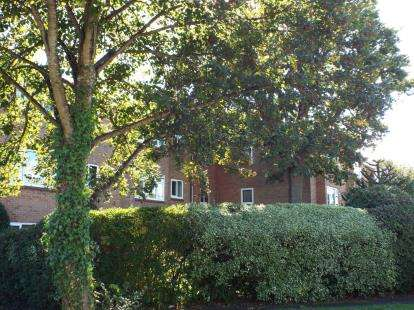 1 Bedroom Flat for sale in Holly Drive, Waterlooville, Hampshire