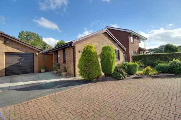 3 Bedrooms Detached Bungalow for sale in Spring Meadow, Leyland, Lancashire, PR25 5PP