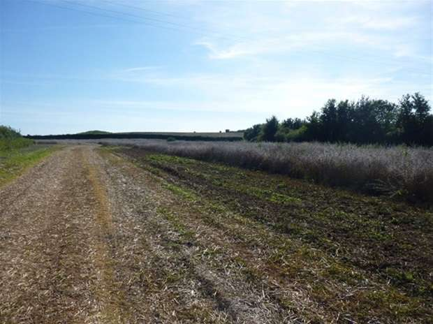 Land Commercial for sale in Tapmoor, Moorlinch, Bridgwater