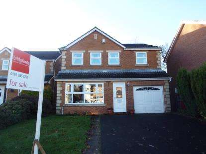 4 Bedrooms Detached House for sale in Princes Meadow, Newcastle Upon Tyne, Tyne and Wear, NE3