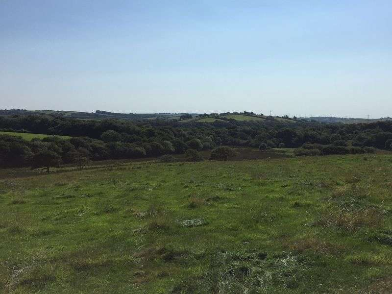 Property for sale in North Tamerton, Holsworthy