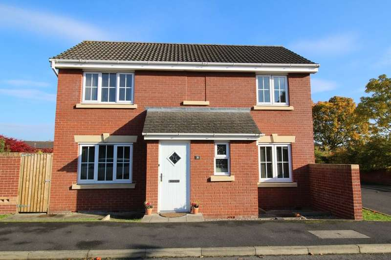 3 Bedrooms Detached House for sale in Lowry Gardens, Carlisle, CA3