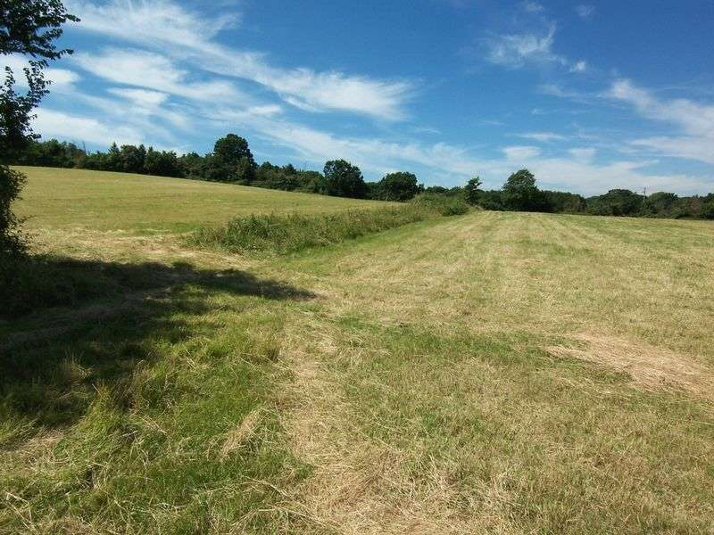 Property for sale in Hoe Lane, Nazeing