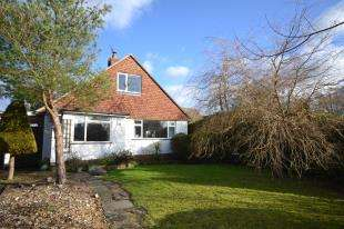 4 Bedrooms Bungalow for sale in Limden Close, Stonegate