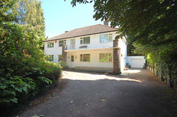 3 Bedrooms Flat for sale in Talbot Woods, Bournemouth, Dorset, BH3