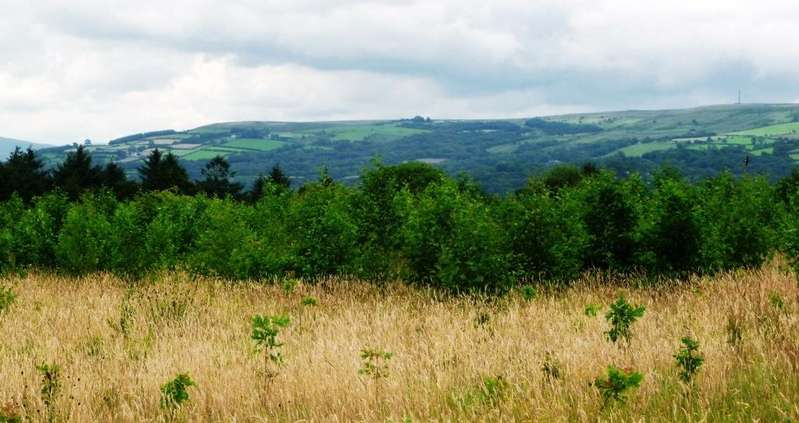 Land Commercial for sale in Davids Wood, Tycroes, Ammanford SA18