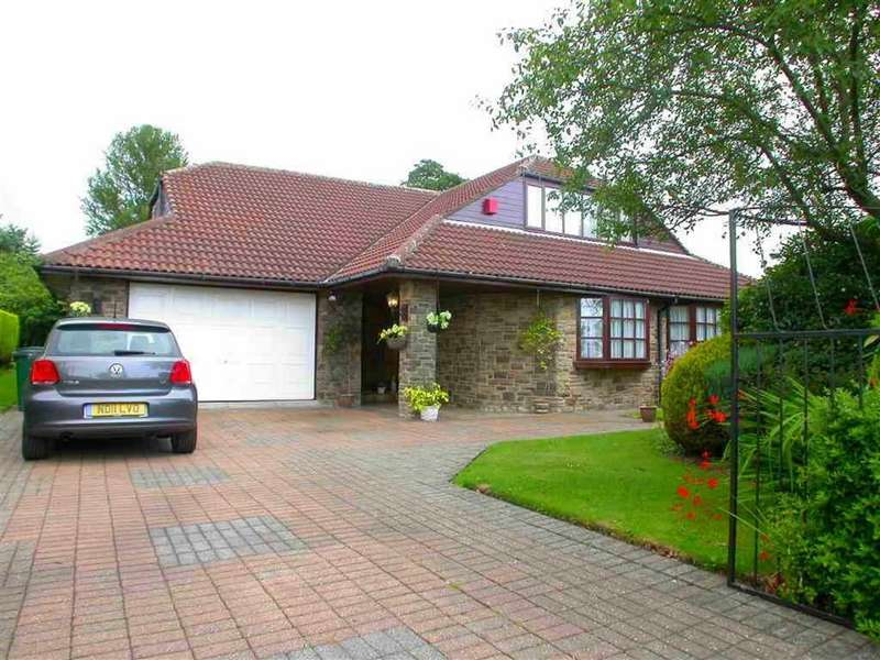 4 Bedrooms Detached House for sale in Whaggs Lane, Whickham, Tyne Wear
