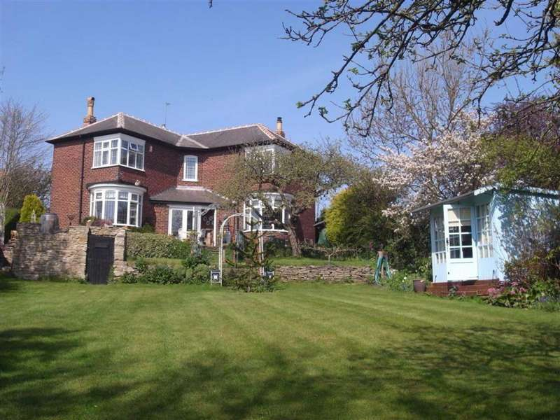 3 Bedrooms Detached House for sale in Salters Avenue, Darlington