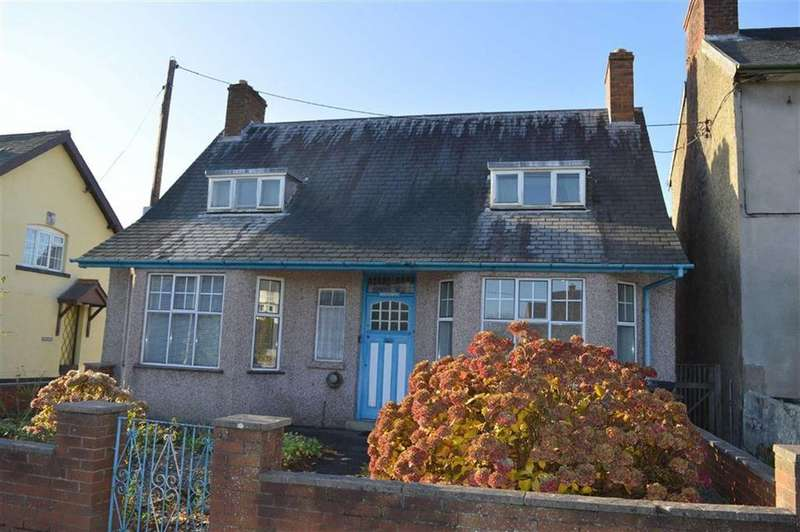 3 Bedrooms Detached Bungalow for sale in Maesgwyn, Cambrian Gardens, Cambrian Gardens, Newtown, Powys, SY16