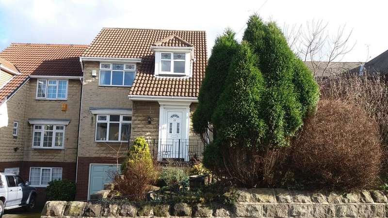 3 Bedrooms Detached House for sale in Winney Hill, Harthill