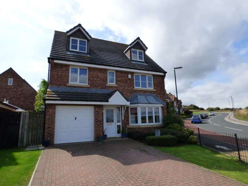 6 Bedrooms Detached House for sale in Rosedale Close, Skelton