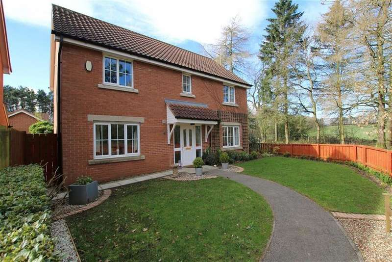 4 Bedrooms Detached House for sale in Cherrytree Drive, School Aycliffe, County Durham