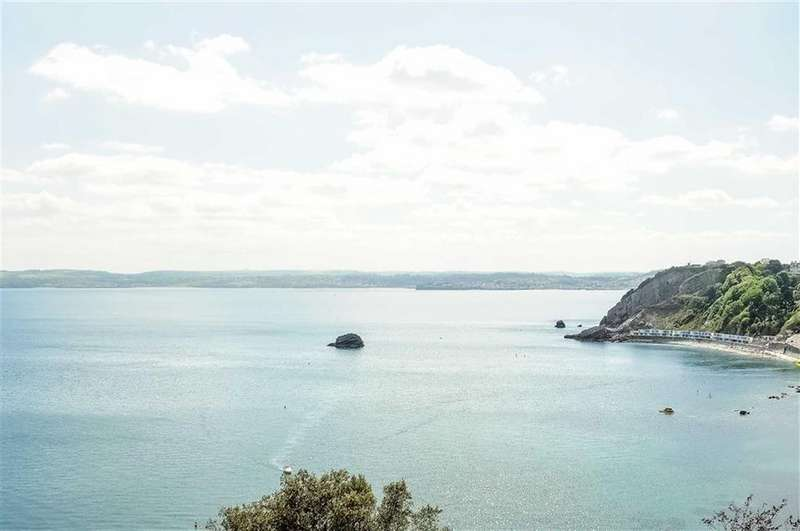 2 Bedrooms Apartment Flat for sale in Ilsham Marine Drive, Torquay, TQ1