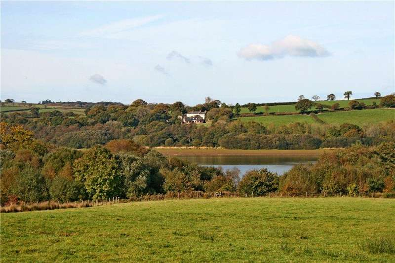4 Bedrooms Detached House for sale in Lower Toft Farmhouse, Germansweek, Devon