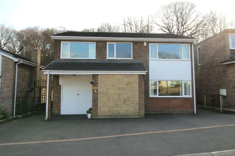 5 Bedrooms Detached House for sale in Paddock Wood, Prudhoe, NE42