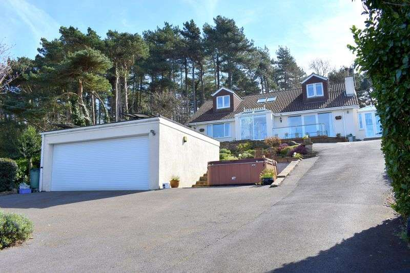 4 Bedrooms Detached Bungalow for sale in Walton Down, Clevedon